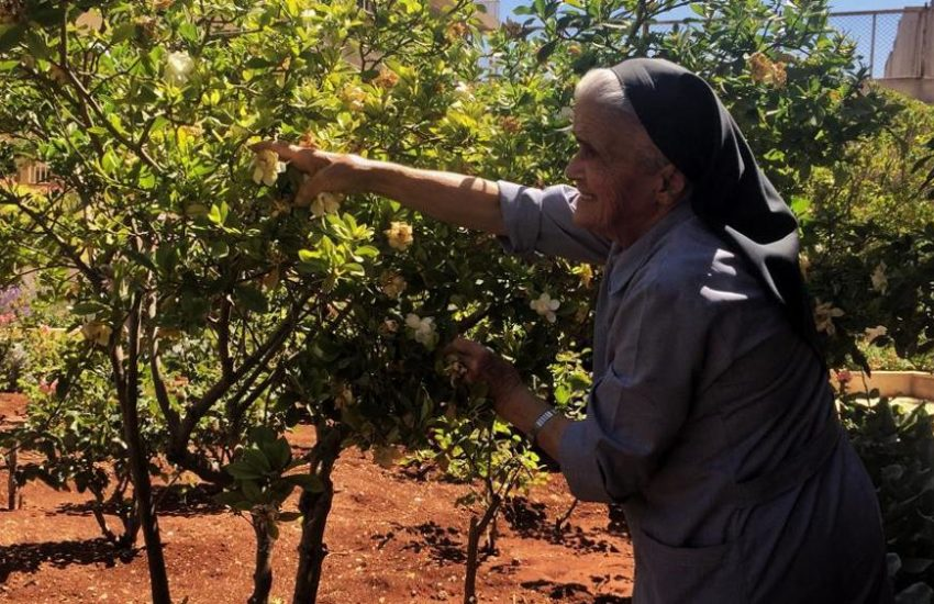 Homs, Siria, 2017. Suor Valentina nel giardino della casa di cura per gli anziani raccoglie i gelsomini e le rose. «Quando mi arrabbio vengo qui», dice l'anziana religiosa.